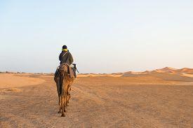 foto of sahara desert  - A couple of tourist ride camel into Sahara desert as Desert Tour on March 18 2014 in Merzouga city Morocco - JPG