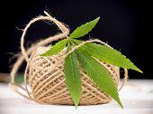 Macro detail of hemp fiber twine and cannabis leaf - marijuana farming concept poster