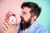 How Much Time Till Deadline. Time To Work. Man Bearded Aggressive Businessman Hold Clock. Stress Con poster