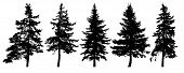 Forest Trees Silhouette. Isolated Vector Set. Christmas Tree, Cedar, Fir-tree, Pine, Pine-tree, Scot poster