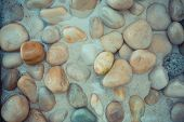 Wet Sea Pebbles And Seashells On Wet Beach Sand With Transparent Water Surf. Natural Sea Stones Clos poster