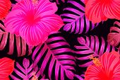 Pink Red Exotic Pattern. Monstera And Hibiscus Flowers Tropical Bouquet.  Hawaiian T-shirt And Swimw poster