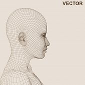 Vector eps concept or conceptual 3D wireframe human female head isolated on beige background as meta