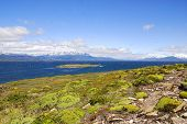 image of tierra  - The Beagle Channel Patagonia Argentina develops between several islands - JPG