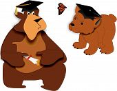 stock photo of senior prom  - Bear facts on graduating the young and the old - JPG