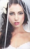 stock photo of bridal veil  - Delicacy - JPG