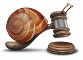 image of deprivation  - Slow justice law concept as a gavel or mallet shaped as a sluggish snail shell hitting a sounding block as a symbol of problems with legal system sentencing delays and lagging political legislation - JPG