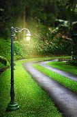 stock photo of fairy tail  - Magic lantern near road in forest - JPG