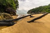 stock photo of tide  - Low tide on a secluded beach in Bako National Park West Sarawak Borneo Malaysia - JPG
