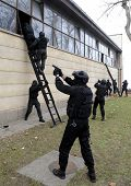 image of special forces  - Special force police in action aiming guns - JPG