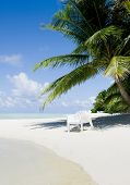 stock photo of kuramathi  - Beach chair under a palm tree on a hot afternoon - JPG