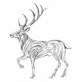 pic of antlers  - The stylized image of the forest deer with large antlers black and white graphics - JPG