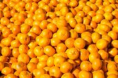 stock photo of clementine-orange  - A big pile of clementines for sale at a market - JPG