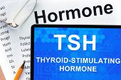 stock photo of hormones  - Papers with hormones list and tablet  with words  Thyroid - JPG