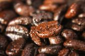 foto of extreme close-up  - a background with coffee beans in macro  - JPG