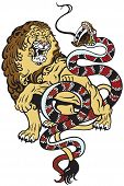 image of jungle snake  - lion and snake fighting  - JPG