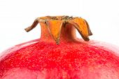 stock photo of apex  - The apex a ripe red pomegranate on a white background - JPG