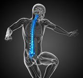 stock photo of lumbar spine  - 3d render medical illustration of the human spine  - JPG