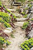 stock photo of pavestone  - Pavestone Walkway in the Blooming Spring Garden - JPG