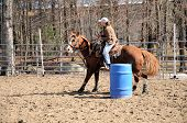 image of barrel racing  - A young woman turns around a barrel and heads to the finish line - JPG