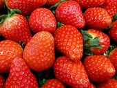 Fresh Strawberries. Strawberry Background. Pattern Texture. Macro. Large, Big Strawberries. Harvesti poster