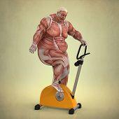 Постер, плакат: Анатомия человека делать тренировки