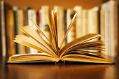 picture of splayed  - Hardcover book lying open on its cover with the pages fanned above it and a row of books on a bookshelf visible behind shallow dof - JPG