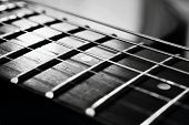 pic of guitar  - The endless strings of electric guitar in black and white - JPG