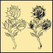 stock photo of spiky plants  - Roses Oldskool Tattoo style design elements  Vector for use - JPG