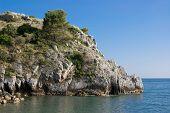 picture of bluff  - Bluff with selvatic vegetation in Mediterranean sea - JPG