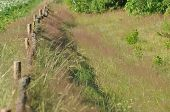 pic of dirt road  - The fence along the dirt road - JPG