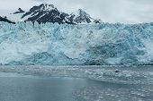 picture of mear  - Icebergs float in front of Alaska - JPG