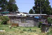 image of wooden shack  - Wooden houses in an African informal settlement - JPG