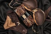 picture of silk lingerie  - Sexy lingerie and leopard bag lying on black satin - JPG