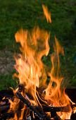 picture of bonfire  - Camping bonfire with flame and firewood in the dark - JPG