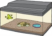 stock photo of glass frog  - Cartoon of little frog on wall in aquarium - JPG