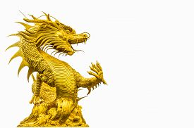 picture of dragon  - Golden dragon statue at isolated on white background - JPG