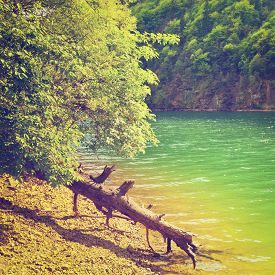 stock photo of italian alps  - Dry Fallen Tree on the Bank of the River in the Italian Alps Instagram Effect - JPG