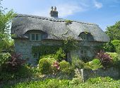 foto of english cottage garden  - Typical English rural cottage with thatched roof and garden - JPG