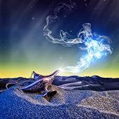 classic aladdin magic lamp in the desert night scene poster