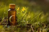 Natural Remedies, Aromatherapy - Bach Therapy. Fresh Herbs - Natural Remedies, Amber  Bott. poster