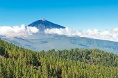 El Teide mountain and Orotava valley, Tenerife island, Canary, Spain