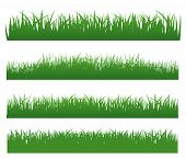 Grass Set With Grass Elements On White Background poster