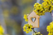 Closeup Wooden House With Hole In Form Of Heart Surrounded By Yellow Flowering Branches Of Spring Tr poster