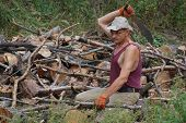 pic of machete  - Man with machete chop logs for firewood - JPG