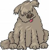 image of newfoundland puppy  - Cartoon Illustration of Funny Purebred Newfoundland Dog or Labrador Doodle or Briard - JPG