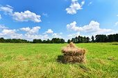 foto of hayfield  - Summer landscape with haystack and blue sky - JPG