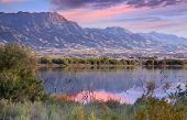 image of mother goose  - Goose lake by route 66 in Arizona during sun set time - JPG