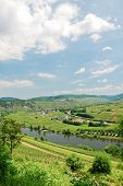 image of moselle  - view of Moselle valley and Mosel river in summer day Germany - JPG