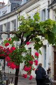 stock photo of anjou  - Romantic streets in French country towns in the Valley of Loire - JPG